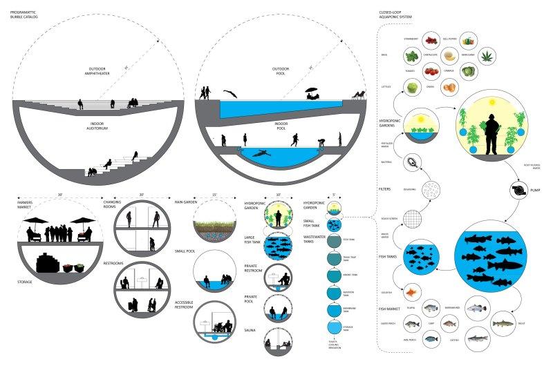 Bubble Typology - Size based on program