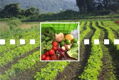 Farm-Blockchain
